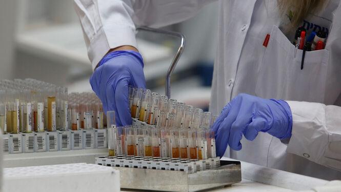 Grippe Tote 2021 Rki